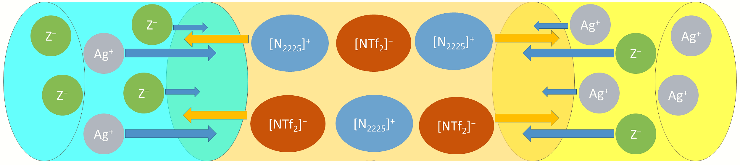 Krossing VIP-Paper II: The Ideal Ionic Liquid Salt Bridge for Direct Determination of Gibbs Energies of Transfer of Single Ions, Part II: Evaluation of the Role of Ion Solvation and Ion Mobilities