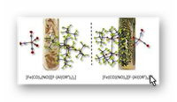 Krossing: VIP-Paper Angew. Chemie: Neuartige Eisencarbonylnitrosyle